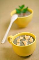 French green lentil cream soups ...