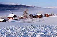 Europe, Sweden, Ostersund, Farm in winter