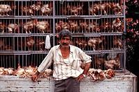 Poultry salesman