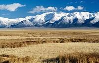 White Mountains California USA
