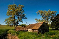 USA, WASHINGTON STATE, PALOUSE COUNTRY, ABANDONED FARM
