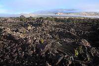 Lava Flow, Hawaii, U.S.A.