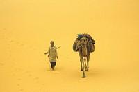 Africa, Algeria, Sahara desert,tuareg with dromedary