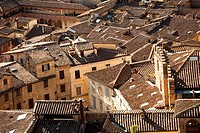 View from Torre del Mangia, Siena, Tuscany, Italy