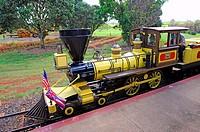 Dole Plantation Pineapple Express Train Wahiawa Honolulu Hawaii Oahu Pacific Ocean