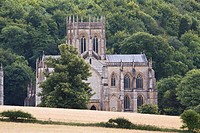 View of old abbey building, with woodland in background, Milton Abbey, Dorset, England, summer
