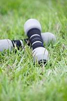Dumbbells on grass