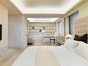 Master bedroom in modern home