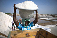 A 'Distressed Seasonal Migrant Worker', works at a salt plant, in Tutcorin, Tamilnadu, India This type of temporary migration is a growing phenomenon ...