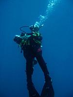 Diver Looking up at the surface Sabang philippines