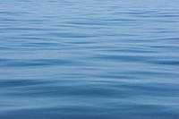 Abstract detail of calm sea surface, Isle of Mull, Western Scotland RR