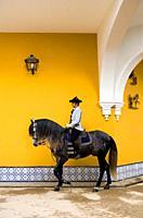 Rider of Royal Andalusian School of Equestrian Art  `Real Escuela Andaluza Del Arte Ecuestre´  Jerez de la Frontera  Cádiz province, Andalusia, Spain