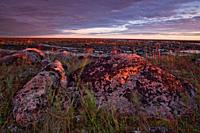 Glacial erratics along the shoreline of Hudson´s Bay during sunset, Manitoba.