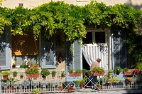 Old town, Beaucaire, Gard, Languedoc-Roussillon, France