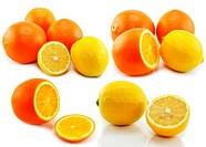 Set of citrus fruits lemon and orange isolated