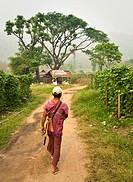 Thailand, Chiang Mai Province, Guide leads the way to the Patara Elephant Farm.