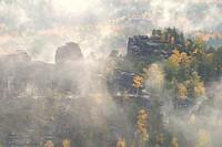Fog in autumn in the Elbe Sandstone Mountains, Saxon Switzerland, Saxony, Germany, Europe