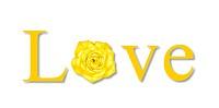 love yellow rose
