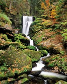 Waterfall near Triberg, Central Black Forest, Baden-Wuerttemberg, Germany, Europe