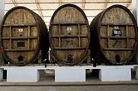 Perú. Ica. Tacama wineries. Old wine barrels.