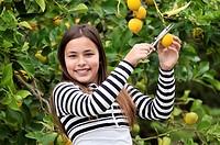 Girl picking lemons from the tree