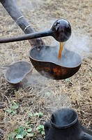 Pouring of local beer at the initiation ritual leap over the cattle, southern Omo valley, Ethiopia, Africa