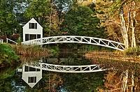 Footbridge, Somesville, Maine, ME, USA