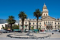 Pigeons form a peace sign, behind the old town hall, built in 1905, Cape Town, South Africa, Africa