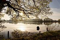 Lake near Roebel, Mecklenburg lake District, Mecklenburg_Western Pomerania, Germany
