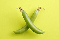 Vegetable , Green Pea pods Pisum sativum arranged as swords or x shape on yellow green