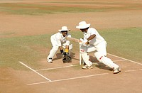 Indian right handed batsman in action playing square cut shot in cricket match MR705I