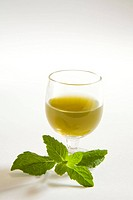 Green spices mint juice against white background , pudina ka rus , India