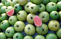 Guava fruits at a market in the Mekong delta near the city of Can Tho in sueden from Vietnam in southeast Asia.