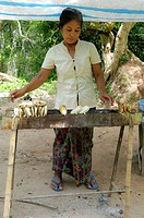 Women standing in front of her grill selling food, 4000 Islands, Laos, Southeast Asia