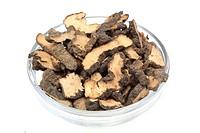 Medicinal plant Larch argaris, purging agaric, quinine fungus, Boletus officinalis, Boletus laricis, Polyporus, Sclerotium, Zhu Ling