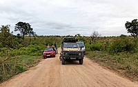 People in cars trying to spot African wildlife, Kruger National Park, Northern Province, South Africa