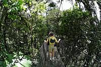 Rainforest, Arenal Hanging Bridges, Costa Rica