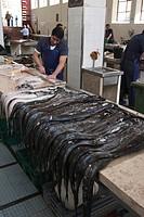 Market hall Mercado dos Lavradores in Funchal - espada fish Black Scabbard - Madeira