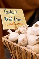 Organic locally grown garlic at farmers´ market in Nevada City, California