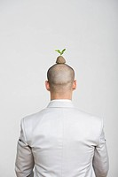 Businessman with a sapling on his head