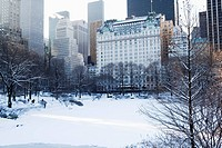 USA, New York City, View of Central Park in winter with Manhattan skyline in background