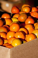 Heap of oranges at a market stall