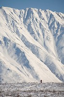 A woman hiking through a snowy, mountainous landscape pulling a sled.