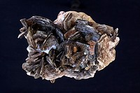 Muscovite Mica - Minas Gerais Brazil - One of the most common minerals in the earth´s crust - Has wide economic importance.