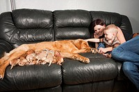A mother and toddler sitting with their Golden Retriever female dog and her eleven one-week-old puppies.