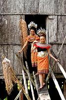 Dayak Ladies in Iban traditional costume. Kuching. Malaysia, Borneo