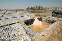 Salt plantation at Rajakhali It is one of the oldest and most ubiquitous of food seasonings and used to preserve food Salt is farmed in the coastal re...