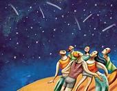 Group of people watching shooting stars