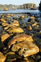 Pacific Coast landscape - Harris Beach State Park - Brookings, Oregon