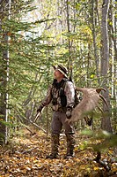 Male bow hunter carries a 54 moose antler rack on his backpack as he hikes out of hunt area, Eklutna Lake area, Chugach State Park, Southcentral Alask...